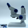 Zeiss Stemi DV4 High-Resolution Compact Greenough Stereomicroscope w/ Integrated Illumination in Stand C LED